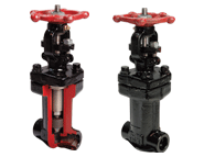 G8 Series Bellows Seal Globe Valve
